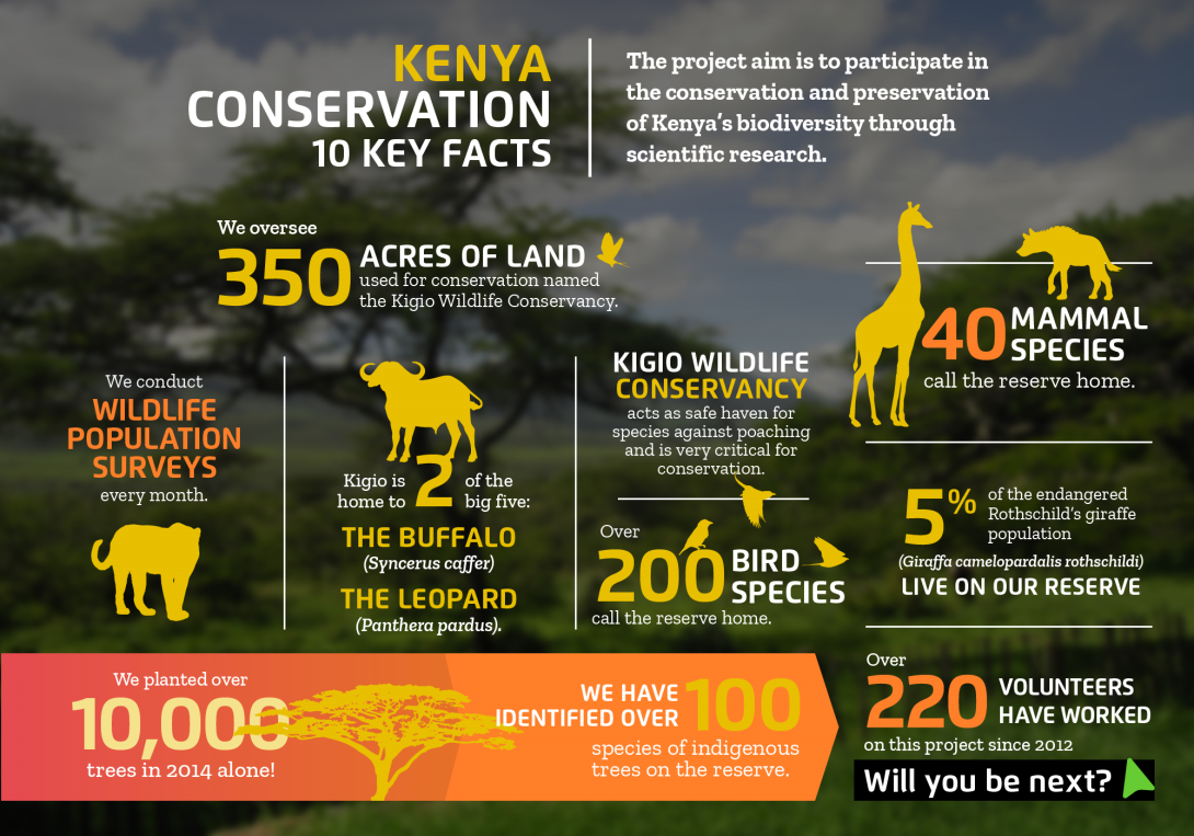 Interesting facts about conservation volunteering in Kenya with projects abroad